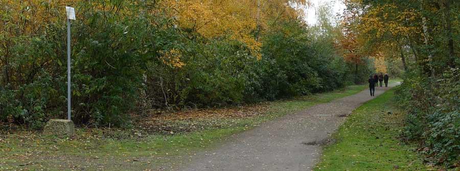 Van Eupen Wald